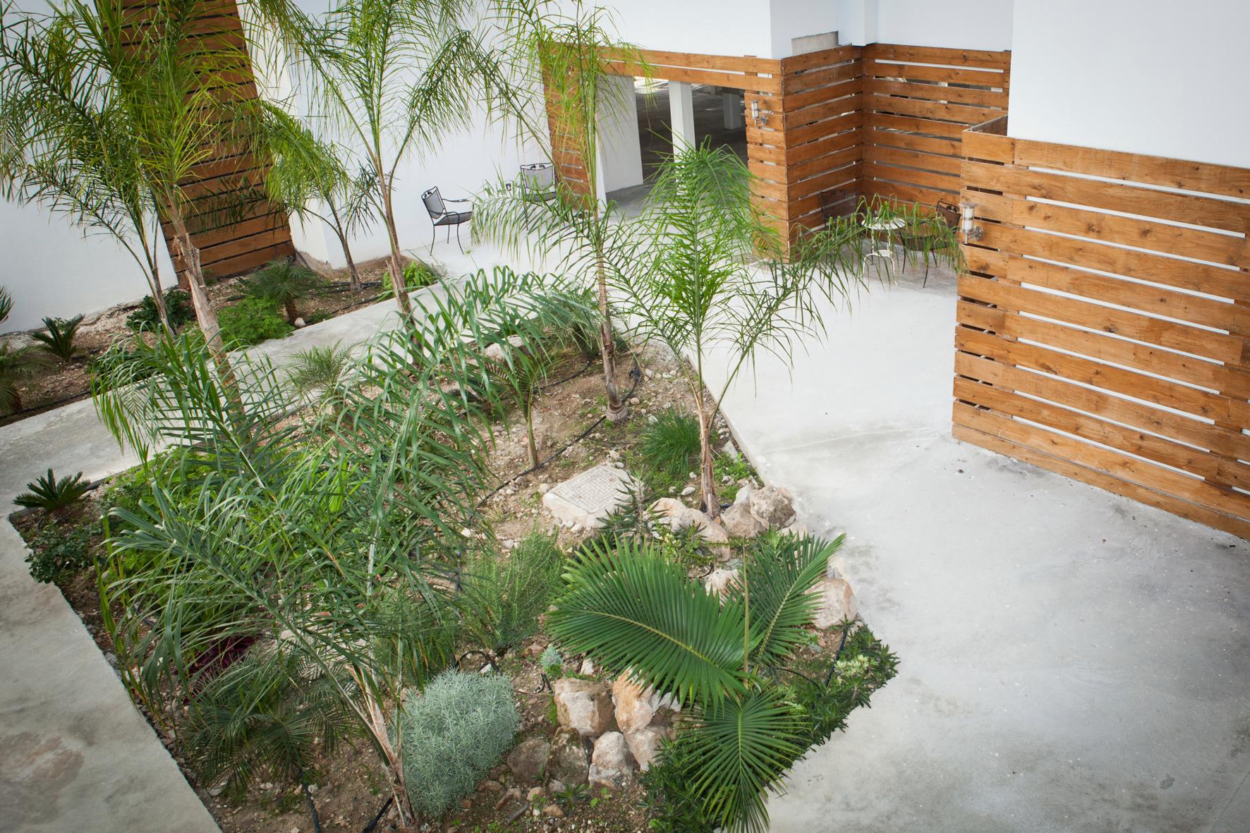 Alecos hotel Apartments Garden Paphos